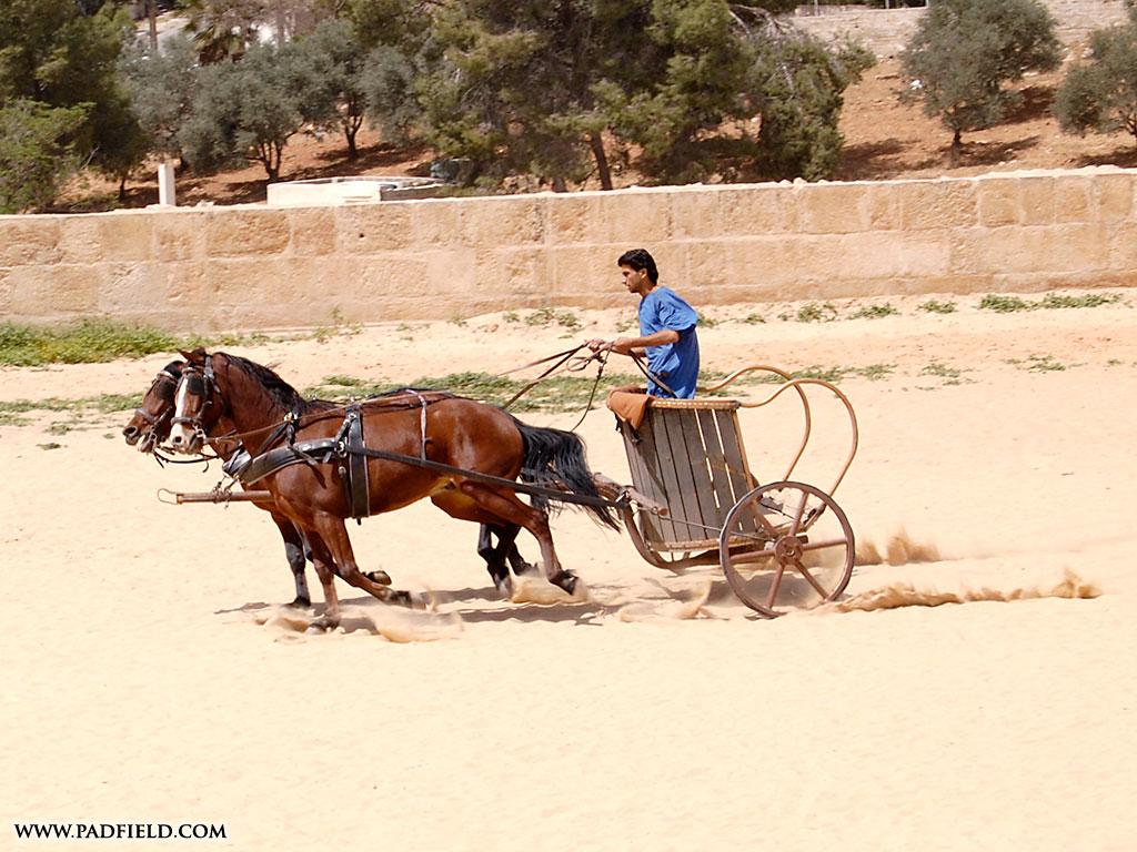 Roman Gladiators and Chariot Races   Jerash, Jordan   Photographs ...
