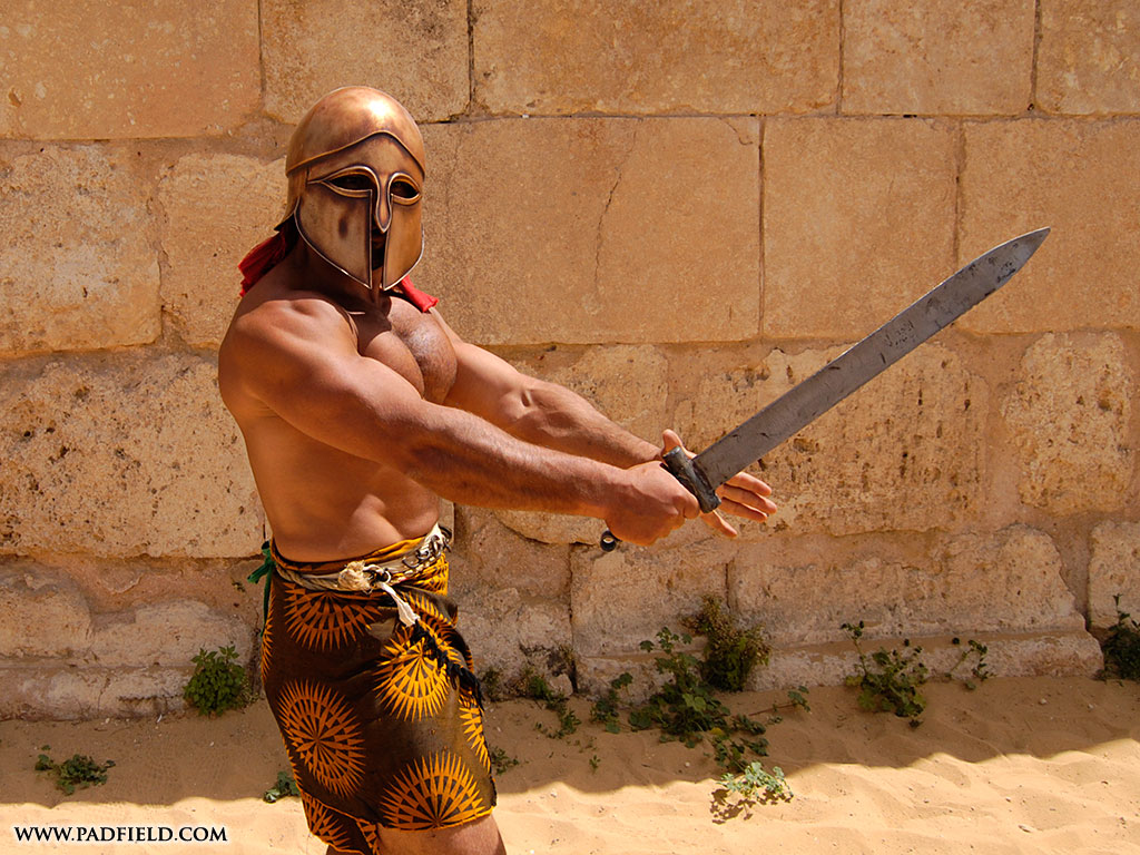 """roman gladiators The history of the decline and fall of the roman empire  3 responses to """" roman gladiators: how they compare to modern sporting heroes ."""
