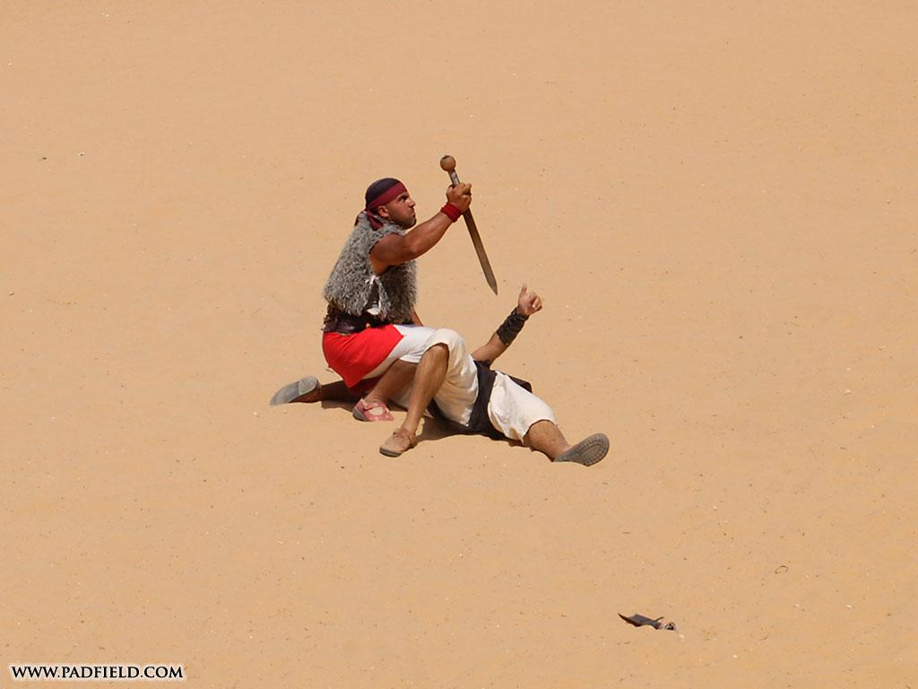 roman gladiators and chariot races at jerash  jordan