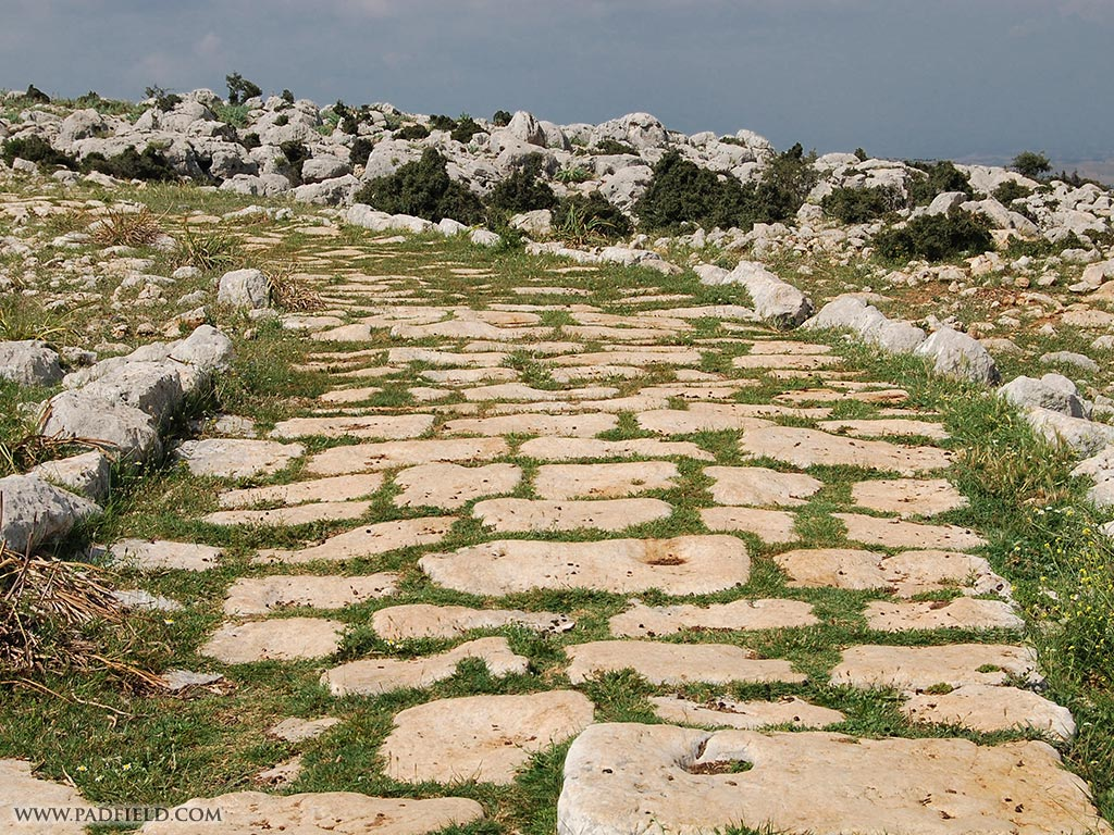 Roman Road | Roma Yolu | Sigliki, Turkey | Bible Land Photos for ...